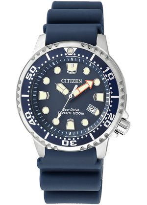 Часы CITIZEN EP6051-14L